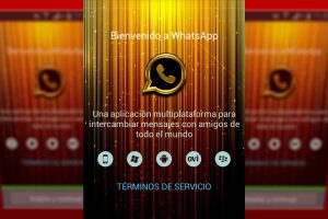 Descargar Whatsapp Gold
